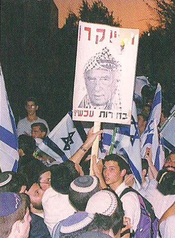 rabin 8